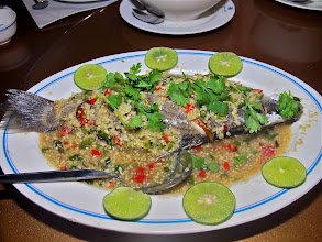 Photo: steamed baramundi with chilli-lime sauce