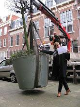 Photo: Ebbetien Boor van het Willemsstraatcomité geeft aanwijzingen waar de eerste bomen moeten komen.