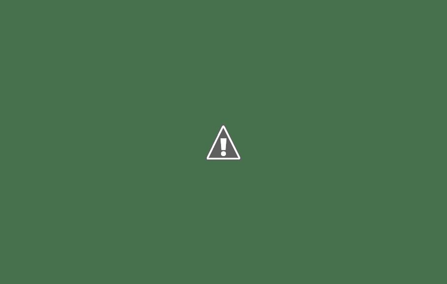 [迷迷動漫] 鈴村健一 熱唱夏季新曲 今夏將於河口湖舉辦露天演唱會