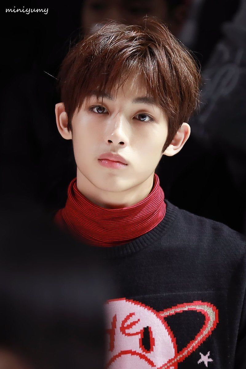 Fans Think NCT's Winwin Looks Like This Famous Japanese