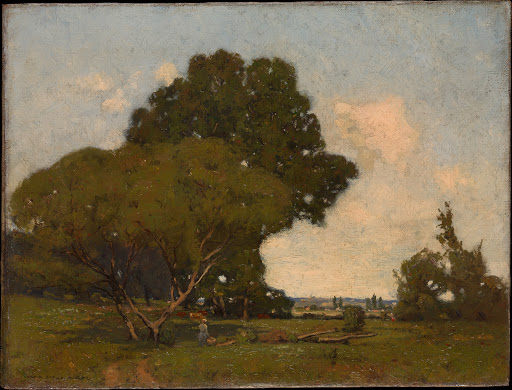 The Trees, Early Afternoon, France