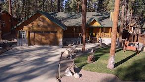 Big Bear Lake Retreat thumbnail