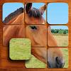 Pferde Puzzles (FREI)