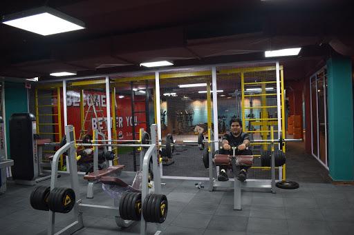 The Iron Pumper'S Gym photo