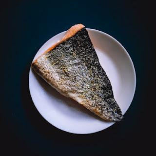 Perfect Toaster Oven Salmon