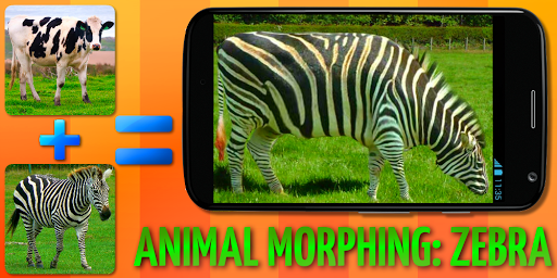 Animal Morphing: Zebra Hybrid 1.2 screenshots 1