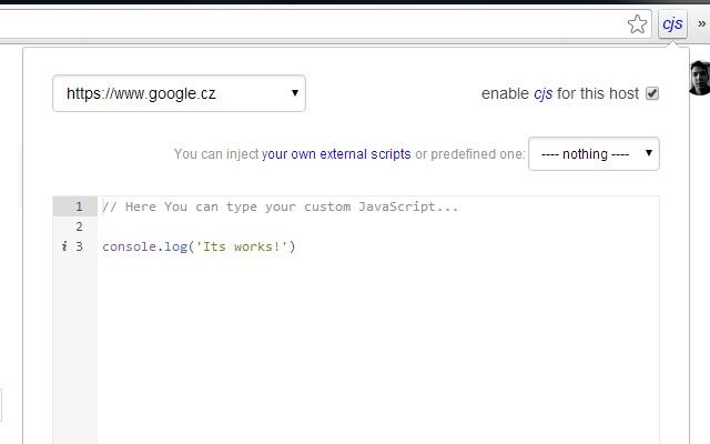 Custom JavaScript for websites