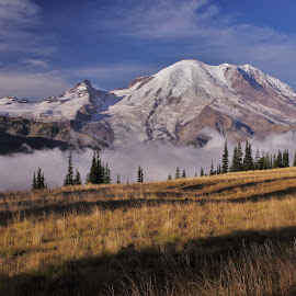 Mt. Rainier by Ramsey Samara - Landscapes Mountains & Hills ( sunrise point, golden, mt. rainier, washington, national parks )