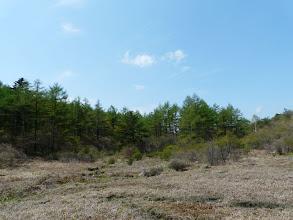 Photo: 井戸湿原で