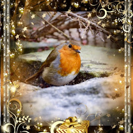 by Betty Taylor - Public Holidays Christmas ( christmas.holidays, cards )