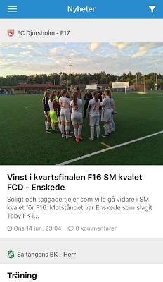 Svenskalag - screenshot