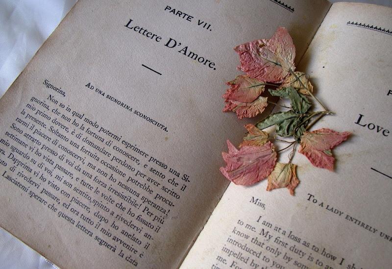 C'era una volta un libro... di Elisabetta Di Girolamo