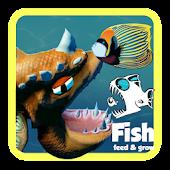 Tải Feed The Fish and grow tips 🦈 miễn phí