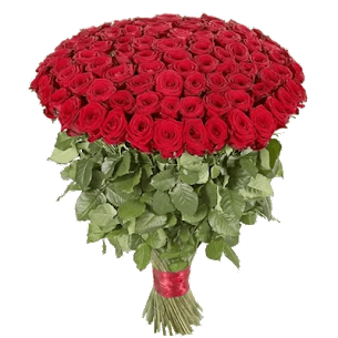 Roses Stickers For Whatsapp – WAStickerApps 2