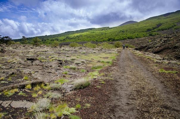 sentiero sull'etna di Salvador