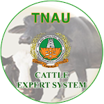 Cattle Expert System 1.1