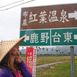 Surviving languages in Taiwan
