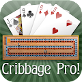Cribbage Pro download