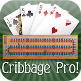 Cribbage Pro Apk Download Free for PC, smart TV
