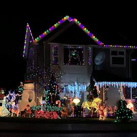 Neighborhood lights by Carol Leynard - Public Holidays Christmas ( holiday lights, decorations, christmas lights, lights )