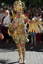 Photo: Papagaion värejä: kulta / The colours of Papagaio: Gold