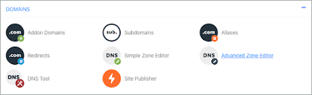 In the Domains section, Advanced Zone Editor is selected.