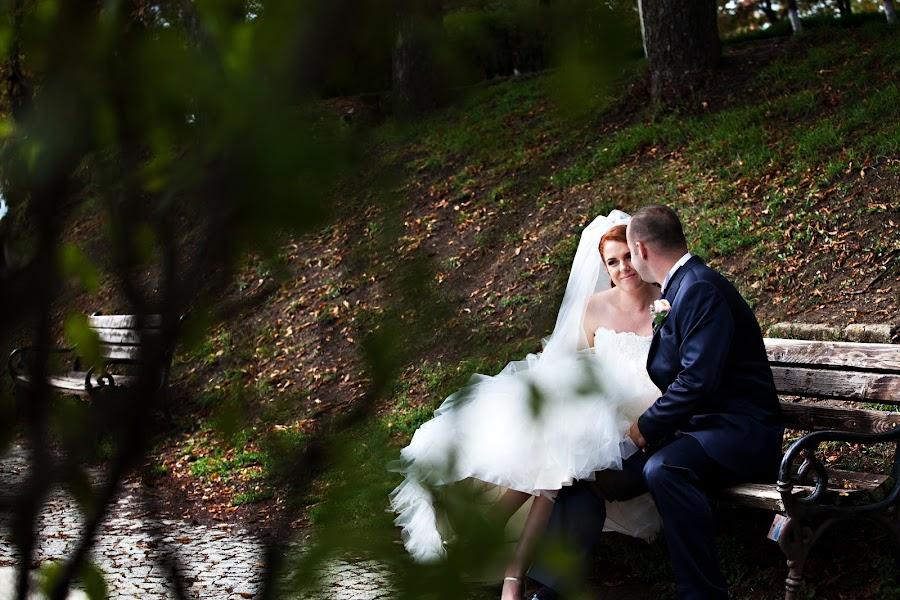 Fotograful de nuntă Alida BOARI (boari). Fotografia din 14.02.2014