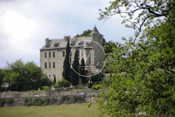 Château 11 pièces 395 m2