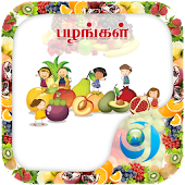 Kids Fruits Learning (Tamil)