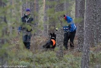 Photo: Joy har funnet Jan Ståle og koser seg med ball lek.