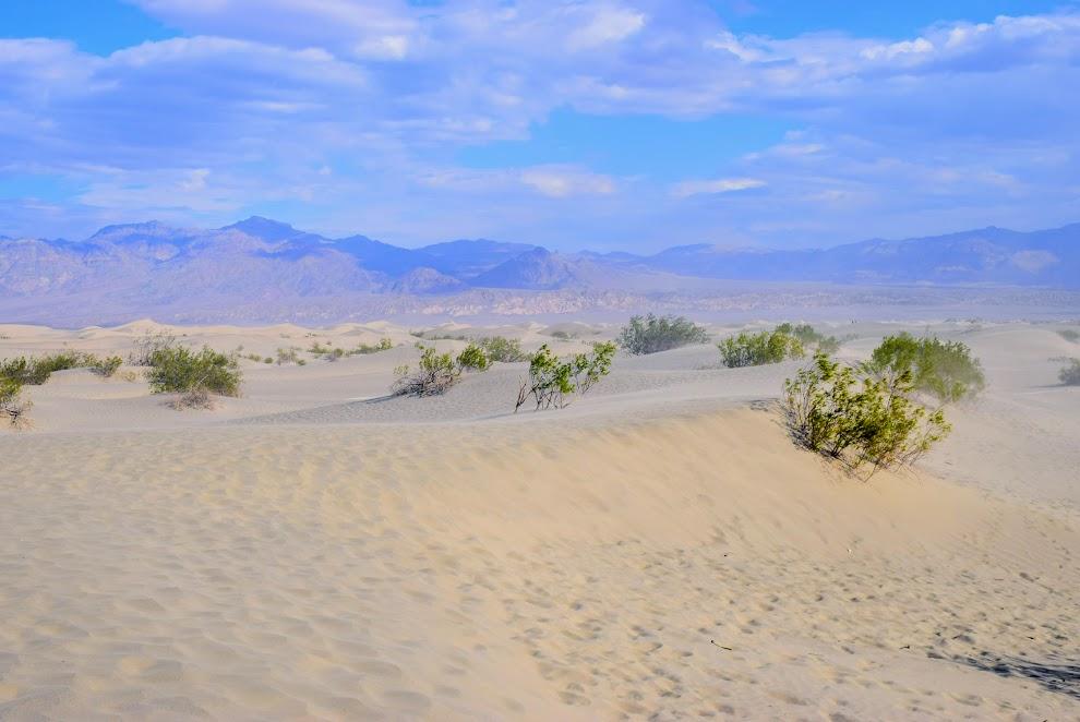Sand dunes 2