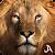 Safari: Evolution file APK Free for PC, smart TV Download