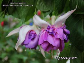 Photo: Quasar