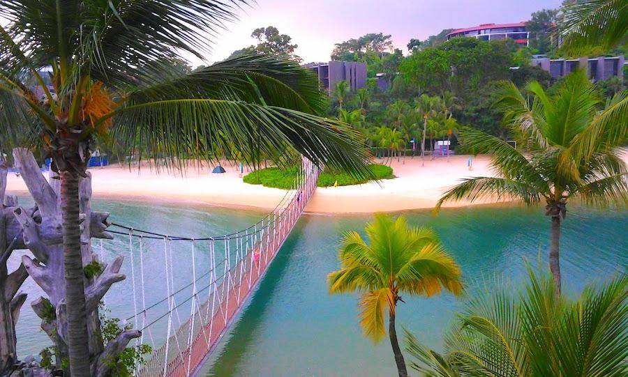 Palawan Beach, Singapore by Akiro Mahilom - Instagram & Mobile Android