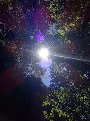 Attimi di luce di silvia_gira