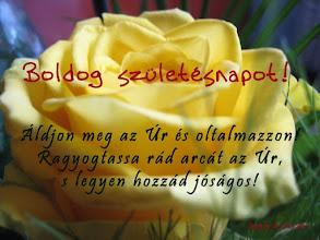 """Photo: """"Boldog születésnapot"""" BIBLIA, SZIT 1996"""