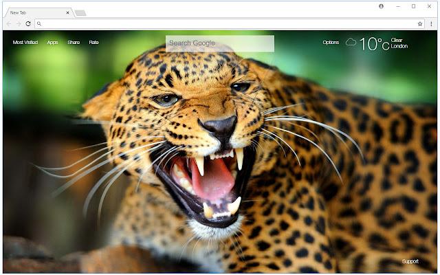 Cheetah wallpaper hd new tab cheetahs themes free addons cheetah wallpaper hd new tab cheetahs themes voltagebd Image collections