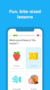 Duolingo: Learn Languages Free 4