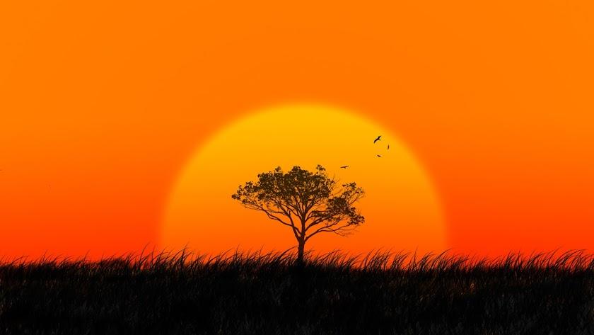 África muestra estampas maravillosas al viajero.