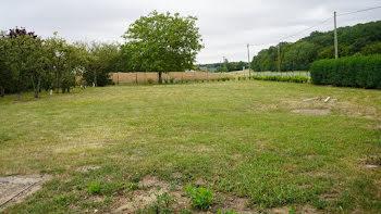 terrain à Champrond-en-Gâtine (28)