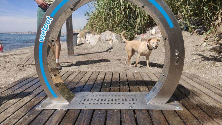 Benalcan playa canina