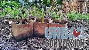 Urban Conversion thumbnail