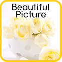 Beautiful Picture icon