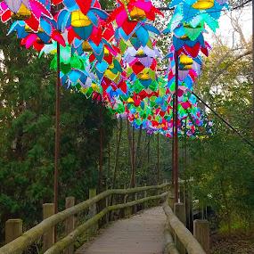 chinese lantern walk by Beverly Lee - Instagram & Mobile Android ( lights, bridge, walk, lanterns, chinese,  )