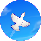 Skyward Journey icon