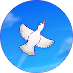 Skyward Journey Icon