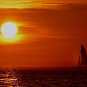 Sailing towards the shine! by Avishek Bhattacharya - Landscapes Sunsets & Sunrises (  )