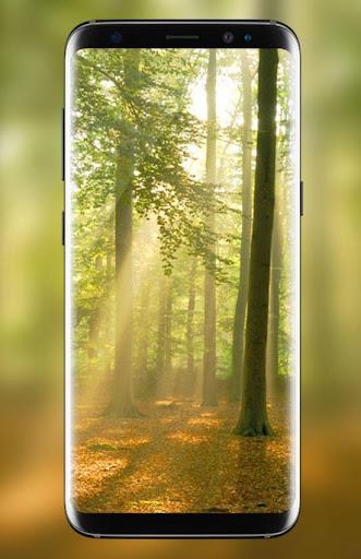 Forest Live Wallpaper 2018 HD Background Nature 3D 1.4 screenshots 9