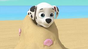 Sea Patrol: Pups Save a Water Walker; Sea Patrol: Pups Save a Windsurfer thumbnail