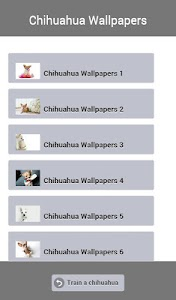 Train a Chihuahua screenshot 20
